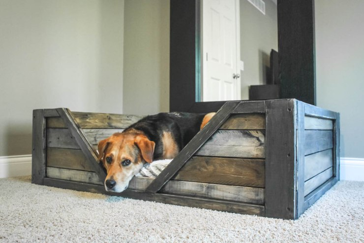 A-Dose-of-Simple-DIY-dog-bed